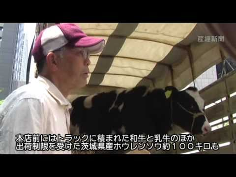 Flustered Fukushima farmers up to their ears in radioactive bullsh*t