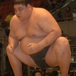 Sumo wrestler arrested in Roppongi for destruction of property