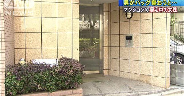 A man tried to steal a woman's bag in front of her apartment in Asakusa (TV Asahi)
