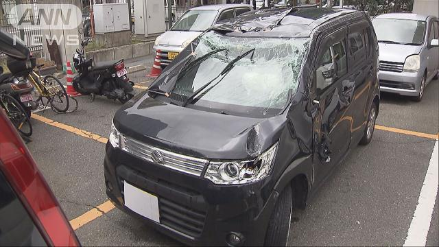 A woman crashed into another car carrying a man and his 4-year-old daughter (TV Asahi)
