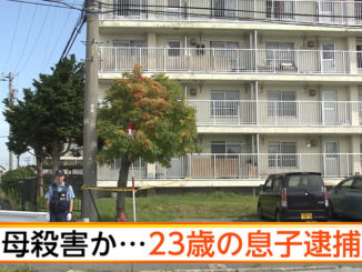 Aomori police arrested a 23-year-old man for allegedly stabbing his mother to death at the residence they shared in Goshogawara City on Wednesday