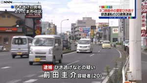 A car driven by Keisuke Maeda struck and injured two police officers who were trying to save a cat