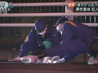 A shooting at an intersection in Matsudo City left one gang member injured on Wednesday