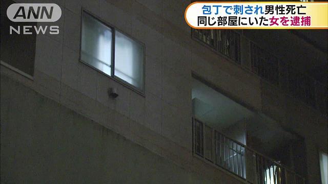 Chiyoda Ward apartment