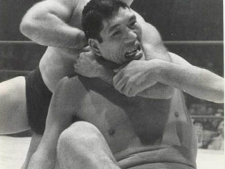 The Destroyer gets acquainted with Giant Baba