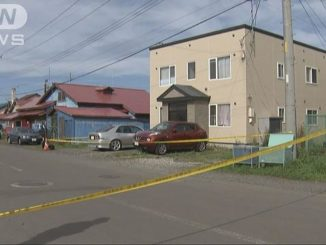 Hokkaido police have arrested a 25-year-old man in the stabbing death of his wife at their residence in the town of Iwanai