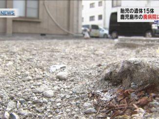 in Kagoshima City