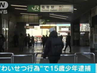 A 15-year-old boy has been accused of molesting a teenage girl inside an elevator near JR Kameari Station