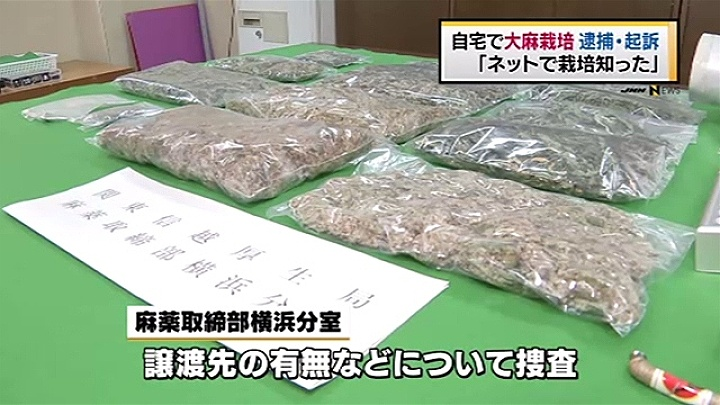 Marijuana valued at 5 million yen was seized from the residence of Satoshi Tomita in the town of Samukawa