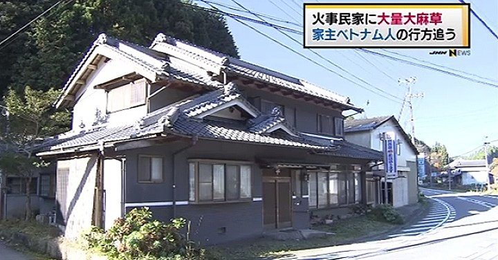 Police exposed a marijuana grow house while investigating a fire at a residence in Nara Prefecture (TBS News)