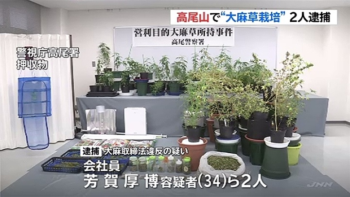 Police seized 27 grams of marijuana and about 120 potted hemp plants