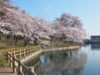 near Mitsudera Park