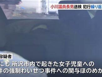 Son of Democratic Party lawmaker Katsuya Ogawa