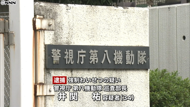 A sergeant for a riot squad has been accused of molesting a woman in Fuchu City in July