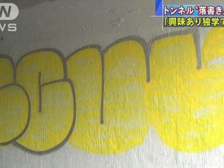 A Taiwanese man allegedly sprayed graffiti inside a tunnel in Tokyo