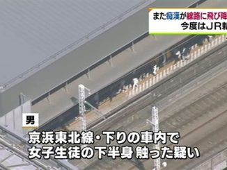 A man accused of groping a woman fled Shimbashi Station by jumping from a platform onto railway tracks on Thursday