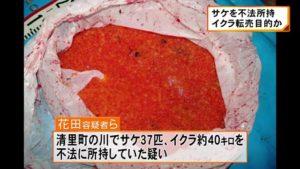 Suspects stole 40 kilograms of salmon roe on November 6